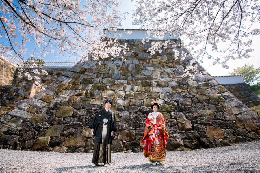 【熊本は暖冬で早めがいい?】桜の前撮り撮影シーズン到来2020年